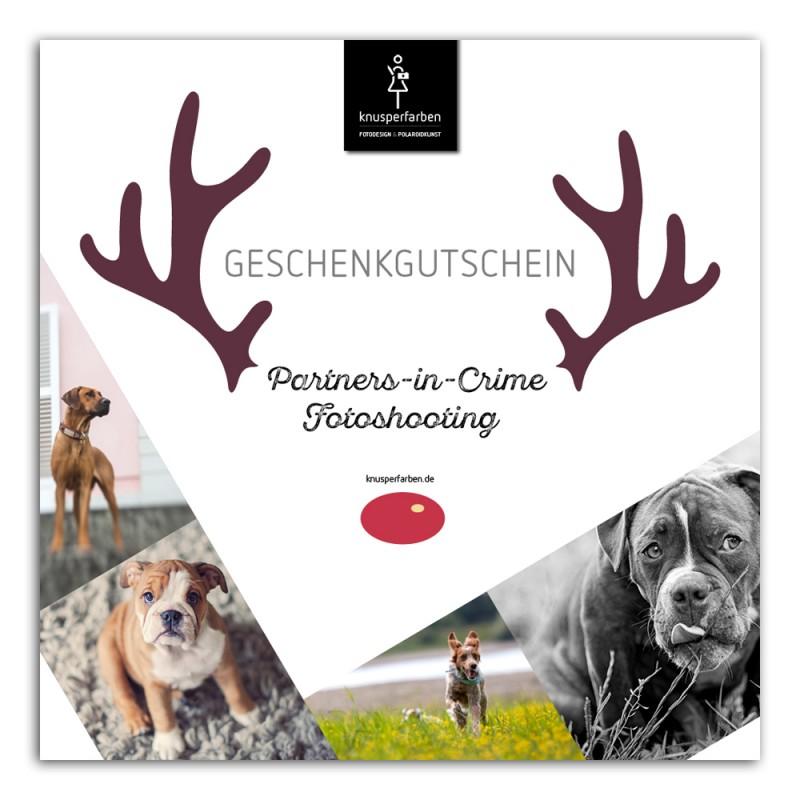 Gutscheine_Dezember_Hunde