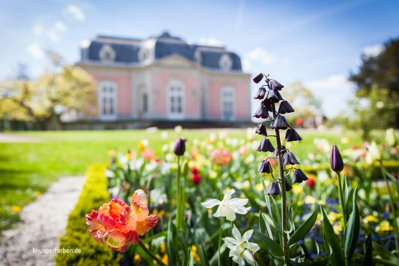 Benrather Schlosspark